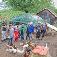 Mias Hühnerfarm zieht Menschen an
