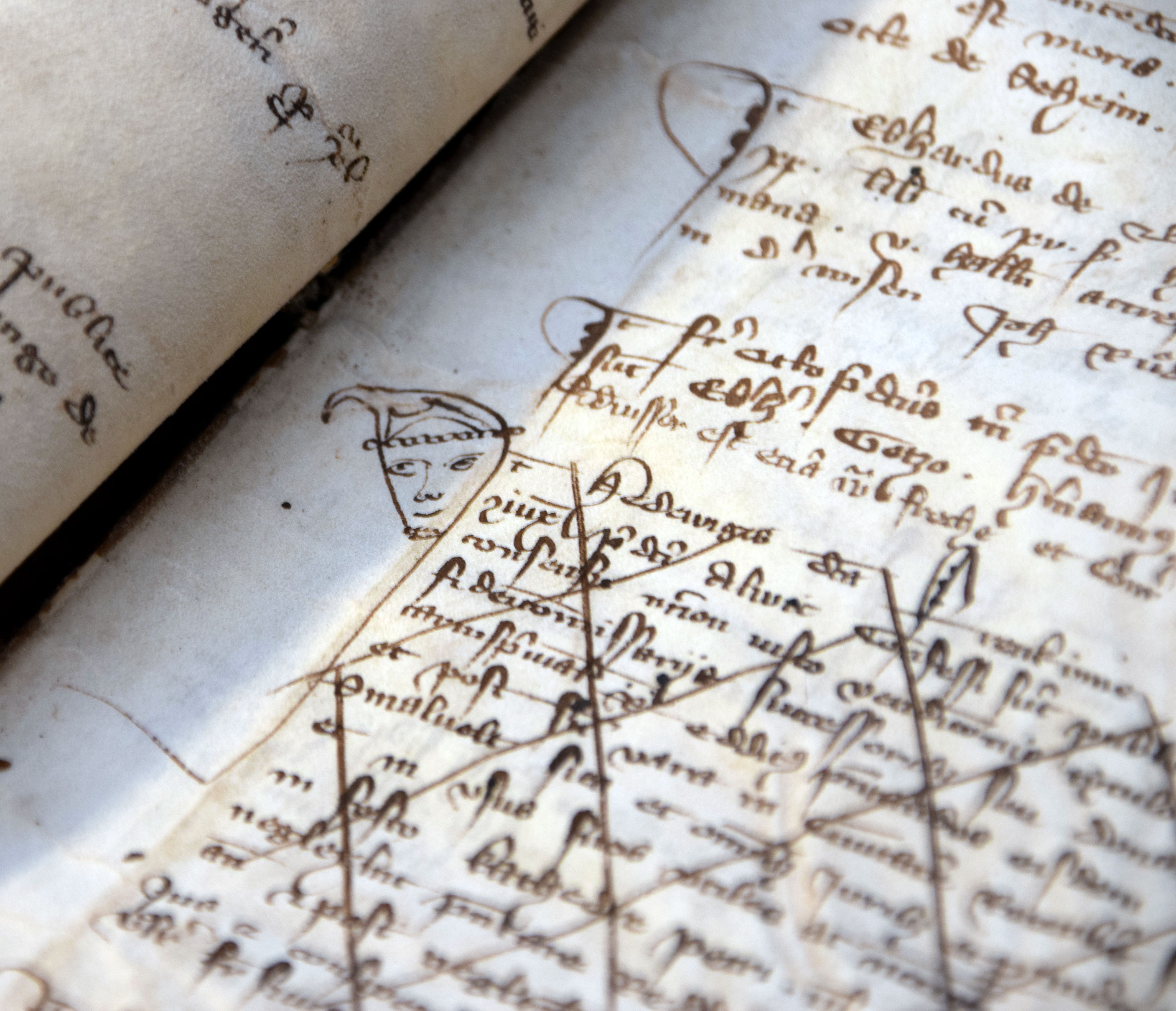 Kurioses Detail im Gerichtsbuch des Kaiserlichen Landgerichts aus den Jahren 1303 bis 1340. Der Geschichtsschreiber hat nicht nur Verhandlungen und Rechtssprechungen festgehalten, sondern auch nette Gesichter an den Seitenrand gezeichnet.