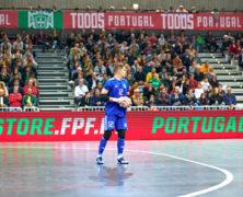 Futsal-Profi
